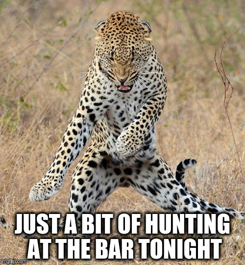 hunting-at-the-bar-tonight